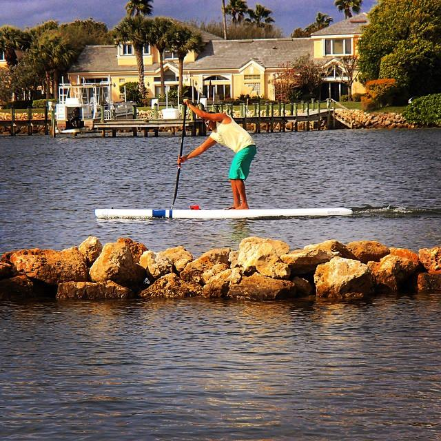 apsu supplement, SUP standuppaddle, jose angulo, miami sup, suprace